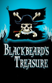 Blackbeard's Treasure by Jenny Dooley