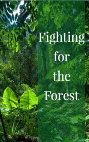 Fighting for the Forest by Clare Gray