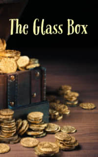 The Glass Box by Jane Rollason