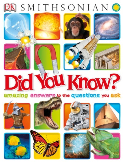 Did You Know Amazing Answer To The Questions You Ask