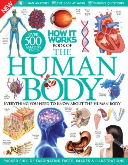How It Works Human Body Ebook