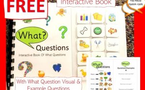 What Questions Interactive